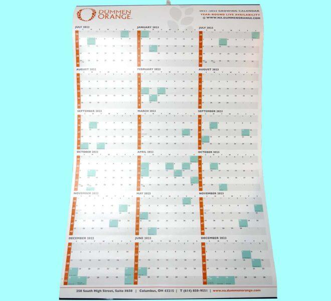 Calendar-Tinning-Unified-Packaging-Dummen-Orange-2
